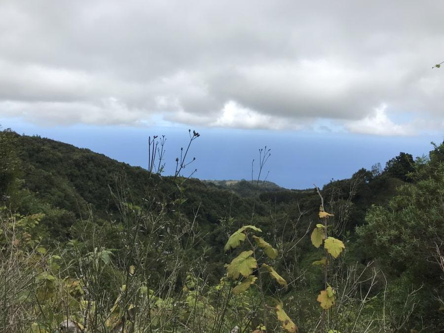 Destination974 Blog Randonnées à La Réunion pour famille - sentier des ouvirers panoramique
