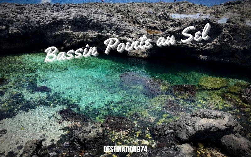 Bassin pointe au sel  - Saint Leu - Destination 974