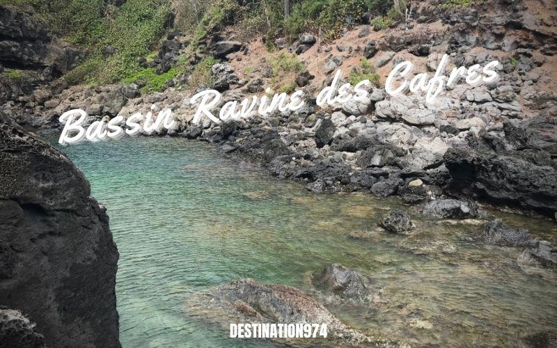 Visite du Bassin Ravine des Cafres après Saint Pierre- Entre Terre rouge Boissy et Ravine des Cafres